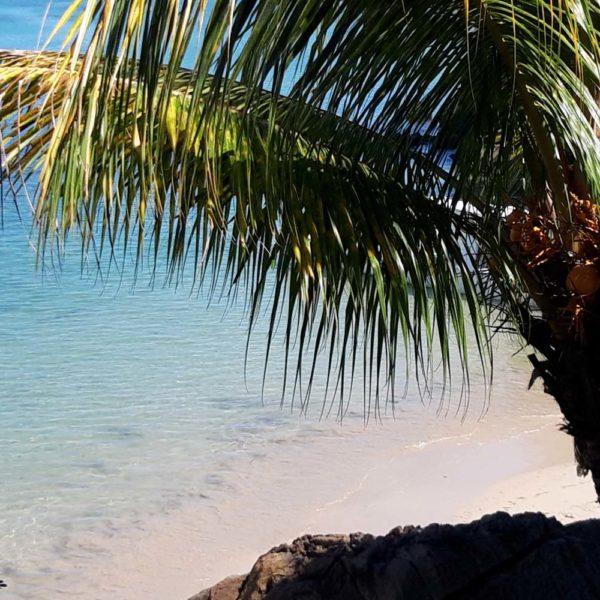spiaggia Jardin Vanille madagascar