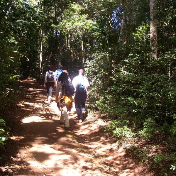 escursione montagne madagascar
