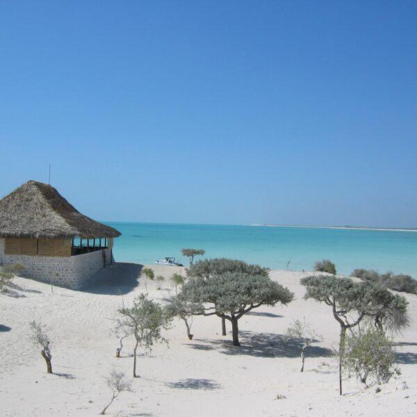 spiaggia salary bay