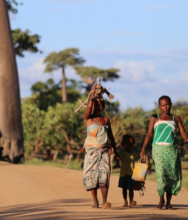 Signore malgasce sull'Avenue du Baobab