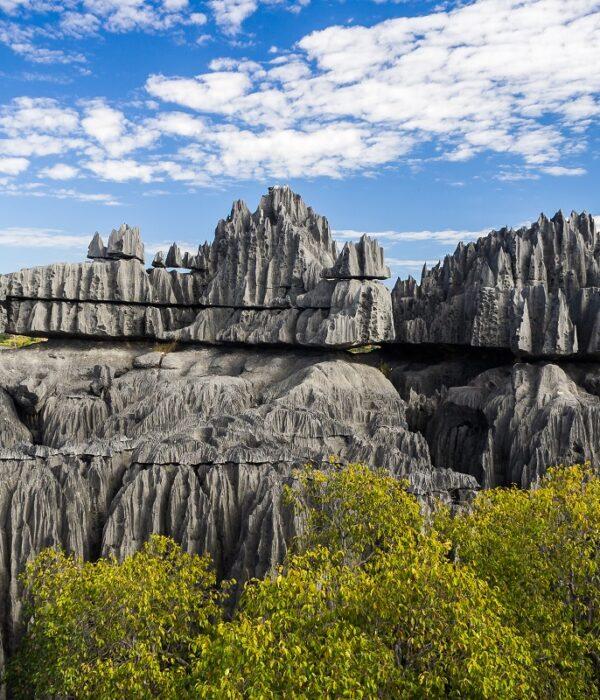 Tsingy la foresta di pietra del Madagascar
