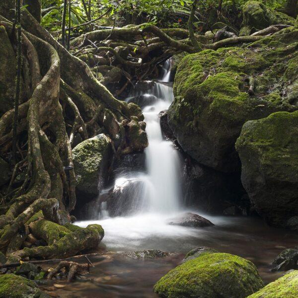parco masoala madagascar cascate