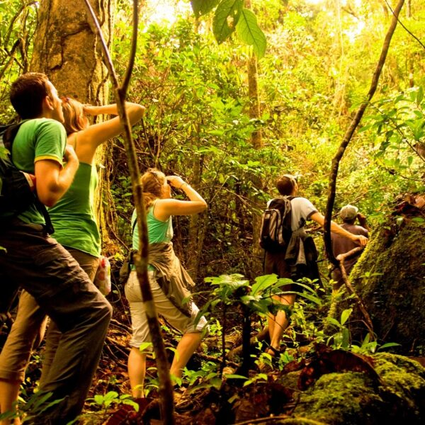 parco nazionale masola trekking madagascar